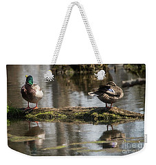 Weekender Tote Bag featuring the photograph Preening Ducks by David Bearden