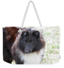 Pretty Black And White Sheltie Dog Weekender Tote Bag