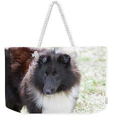 Pretty Black And White Sheltie Dog Weekender Tote Bag by DejaVu Designs