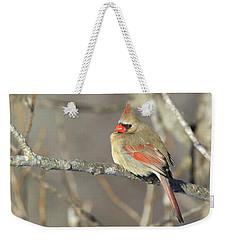 Pretty Female Cardinal Weekender Tote Bag