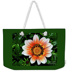 Weekender Tote Bag featuring the photograph Pretty Gazania By Kaye Menner by Kaye Menner