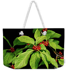 Weekender Tote Bag featuring the photograph Pretty Little Red Berries by Lois Bryan