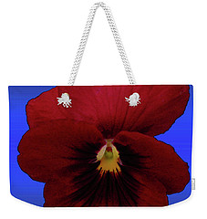 Weekender Tote Bag featuring the photograph Pretty Pansy by Donna Brown