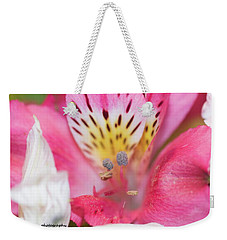 Pretty Pink Weekender Tote Bag by Nance Larson