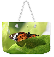 Preview - Weekender Tote Bag
