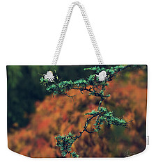 Weekender Tote Bag featuring the photograph Prickly Green by Gene Garnace