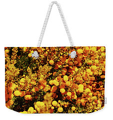 Prickly Moses Weekender Tote Bag by Cassandra Buckley