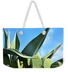 Weekender Tote Bag featuring the photograph Prickly Pear Cactus And Century Plant by Ray Shrewsberry