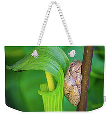 Weekender Tote Bag featuring the photograph Prince Of The Pulpit by Bill Pevlor