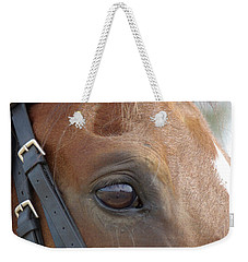 Weekender Tote Bag featuring the photograph Prinz by Jim and Emily Bush