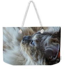 Profile Weekender Tote Bag by Karen Stahlros