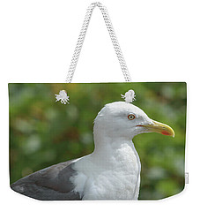 Weekender Tote Bag featuring the photograph Profile Of Adult Seagull by Jacek Wojnarowski