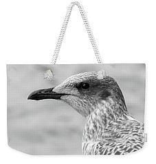 Weekender Tote Bag featuring the photograph Profile Of Juvenile Seagull Bw by Jacek Wojnarowski