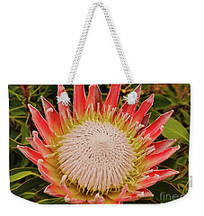 Protea I Weekender Tote Bag by Cassandra Buckley