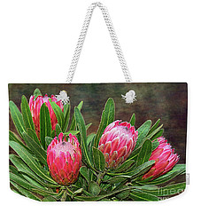 Weekender Tote Bag featuring the photograph Proteas In Bloom By Kaye Menner by Kaye Menner