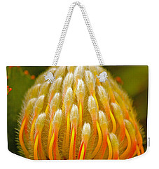 Proteas Ready To Blossom  Weekender Tote Bag by Michael Cinnamond