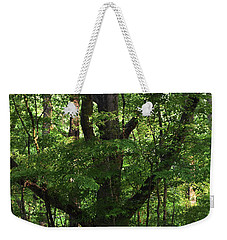 Weekender Tote Bag featuring the photograph Protecting The Children by Skip Willits