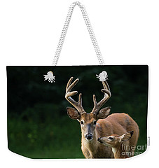 Weekender Tote Bag featuring the photograph Protective Dad by Andrea Silies