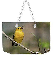 Prothonotary Warbler Singing Weekender Tote Bag