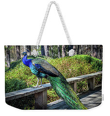 Weekender Tote Bag featuring the photograph Proud As A Peacock by James Barber