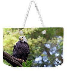 Weekender Tote Bag featuring the photograph Proud by Rebecca Cozart