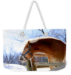 Pssssssh.....it's Not Cold Weekender Tote Bag by Angela Rath