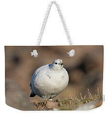 Ptarmigan Going For A Stroll Weekender Tote Bag