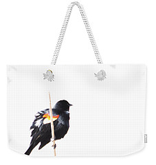 Puffed Up Red-winged Blackbird Weekender Tote Bag
