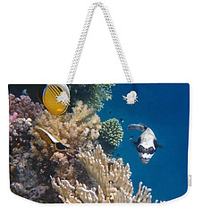 Pufferfish And Butterflyfish Weekender Tote Bag