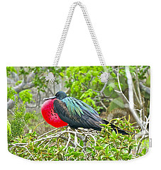 Puffing Up When Courting Weekender Tote Bag