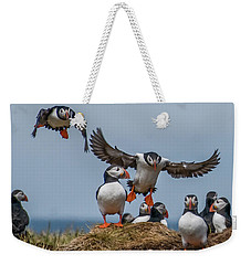 Weekender Tote Bag featuring the photograph Puffins by Brian Tarr