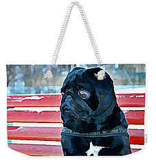 Pug In Deutschland Weekender Tote Bag
