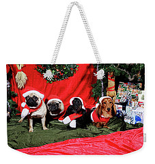 Pugs And Dachshounds Dressed As Father Christmas Weekender Tote Bag