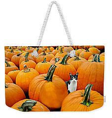 Pumpkin Patch Cat Weekender Tote Bag