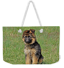 Weekender Tote Bag featuring the photograph Puppy Halo by Sandy Keeton