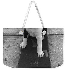 Puppy Skater Weekender Tote Bag
