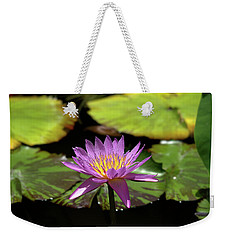 Purple And Yellow Water Lily Weekender Tote Bag