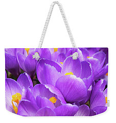 Purple Crocuses Weekender Tote Bag