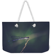 Weekender Tote Bag featuring the photograph Purple Damsel by Shane Holsclaw