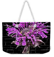 Weekender Tote Bag featuring the photograph Purple Flower Under Bricks by Walt Foegelle