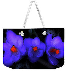 Beautiful Blue Purple Spring Crocus Blooms Weekender Tote Bag