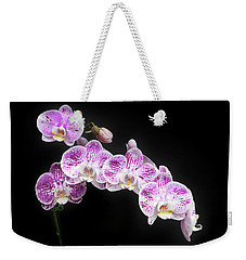 Weekender Tote Bag featuring the photograph Purple On White On Black by Denise Bird