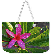 Purple Plumeria Weekender Tote Bag