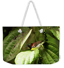 Purple-rumped Sunbird Weekender Tote Bag