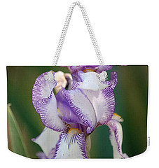 Weekender Tote Bag featuring the photograph Purple Striped Bearded Iris 2 by Sheila Brown