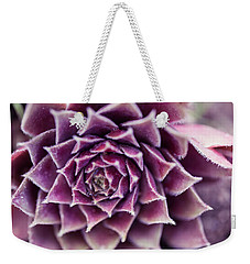 Weekender Tote Bag featuring the photograph Purple Succulent Plant Blossom In Summer by Jingjits Photography