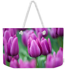 Purple Tulips Of Keukenhof Weekender Tote Bag