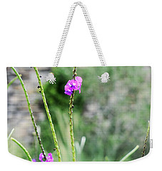 Weekender Tote Bag featuring the photograph Purple Vebena by James Fannin