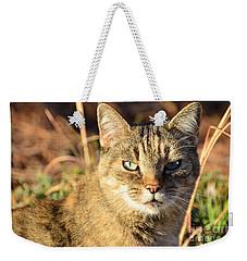 Purr-fect Kitty Cat Friend Weekender Tote Bag