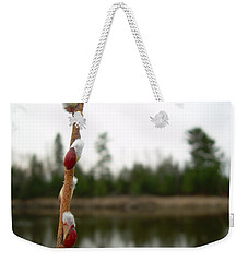 Weekender Tote Bag featuring the photograph Pussy Willow Buds by Kent Lorentzen